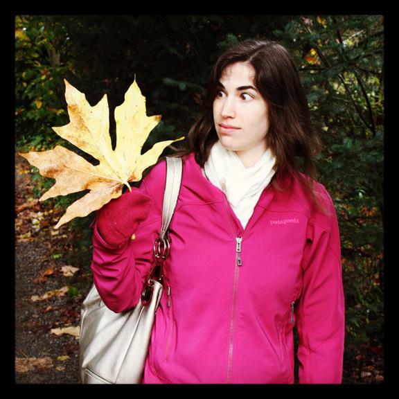 dino leaf