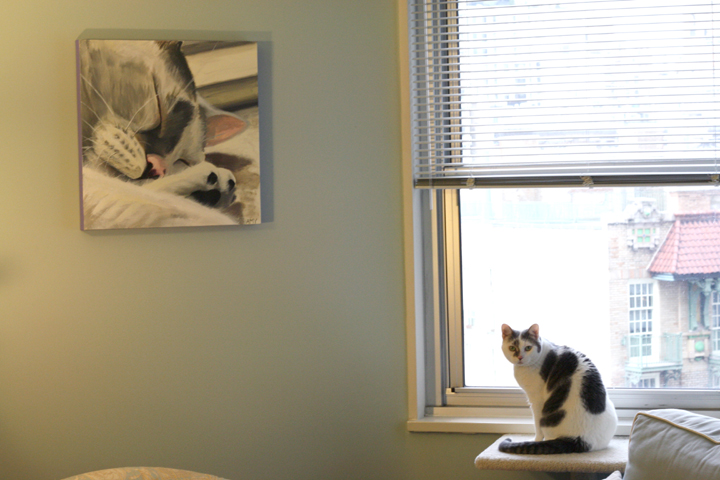 Custom Cat Painting