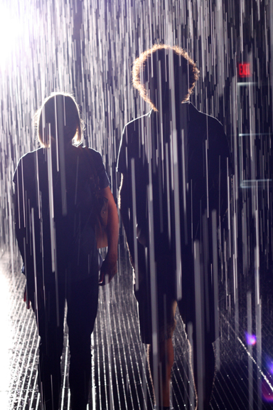 Moma Rain Room ~ ElephantEats.com