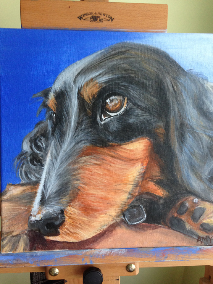 Mini Dachsund Pet Portrait ~ ElephantEats.com